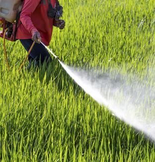 Curso de aplicador de productos fitosanitarios (nivel básico) andorra