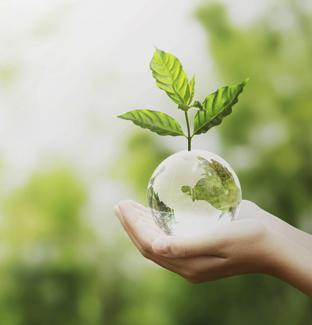 Curso de sostenibilidad andorra